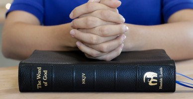 Clasped Hands and Bible