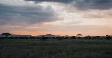Tanzania Skyline
